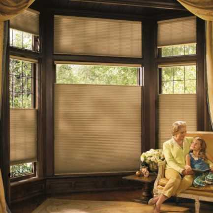 "1/2"" Single Cell (Good Housekeeping) Designer Signature Blackout Honeycomb Shades 4377"