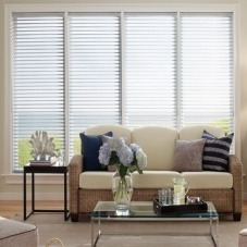 "1"" Single Cell (Good Housekeeping) Designer Signature Vuthru Light Filtering Insulating Shades"