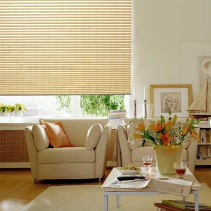 Value Pleated Light Filtering Shades 4233 Thumbnail
