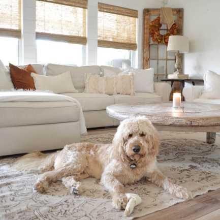 Designer Coastal Woven Wood Shades 8398 Thumbnail