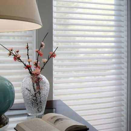 Toiles diaphanes « filtres de lumière » sans cordon de Luxe de 3 po 4865