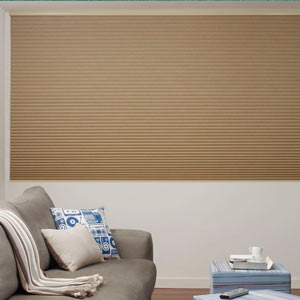 Large Blinds