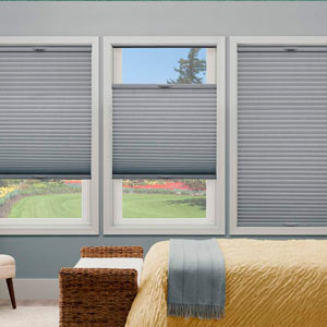 Window Blind Styles
