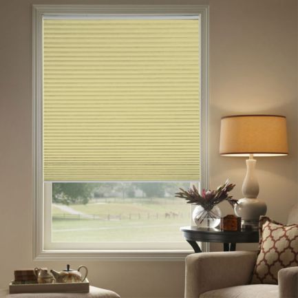 """1/2"""" Single Cell (Carriann) Designer Signature Blackout Honeycomb Shades"""