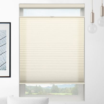 Value Light Filtering Cordless Top Down Bottom Up Honeycomb Shades